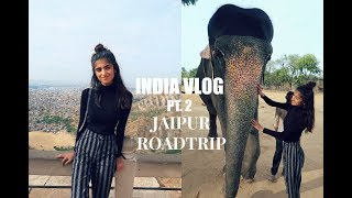 INDIA VLOG PART 2: ROADTRIP FROM PUNJAB TO JAIPUR | Kim Mann