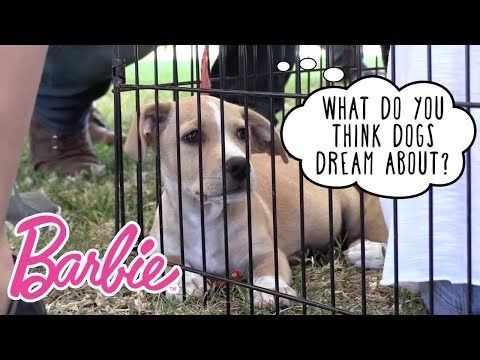 Puppy Love Brought to You by Barbie®! | Barbie