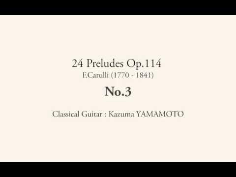 Фердинандо Карулли - Opus 114 No 20