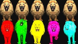 wild animals finger family song for kids,nursery rhymes,children,toddlers,Learn Colors,NASH TOON Tv