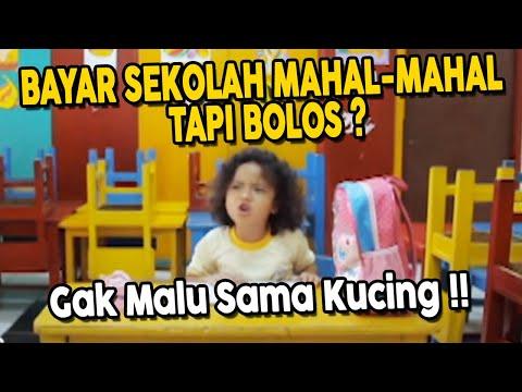 download lagu Bayar Sekolah Mahal - Mahal Tapi Bolos ? Gak Malu Sama Kucing !! gratis