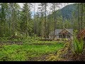 Build your custom home on a 1 acre lot in Arlington, WA