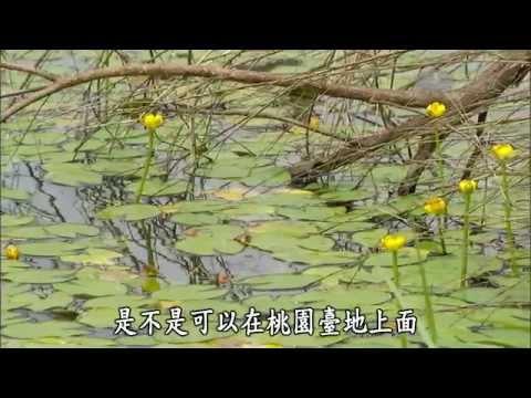 台灣-紀錄新發現-20140913 千埤萬塘桃園臺地