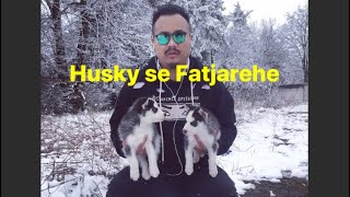 HUSKIES in the snow,RUSSIA (vaccination time)vlog 18