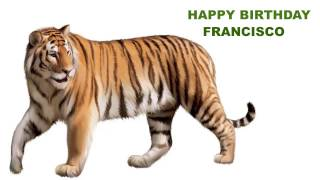Francisco  Animals & Animales - Happy Birthday