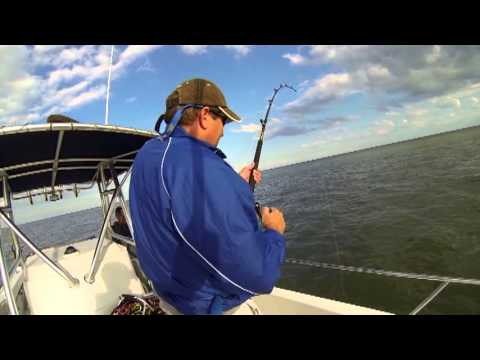 Hilton Head Fishing - OUTCAST SPORT FISHING CHARTERS
