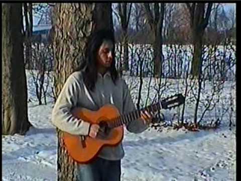 Persian Guitar (Saman)