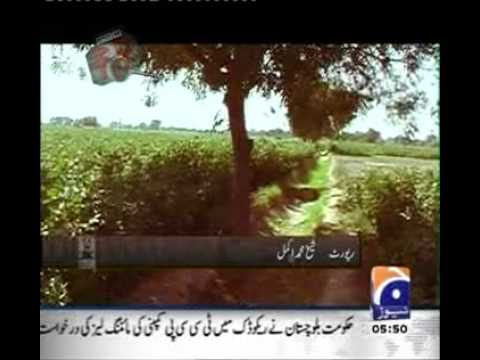 Sex And Kill To 11 Year Boy - By 3 Pakistani Muslims.vob video