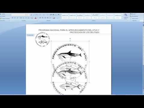Como crear una hoja membretada utiilizando Word 2007