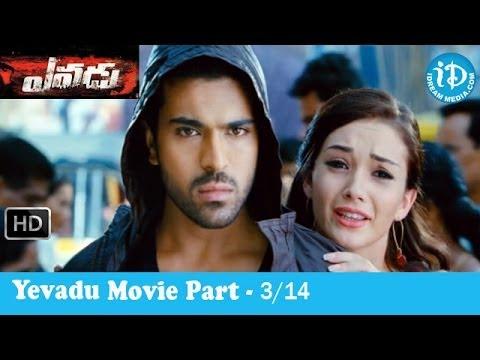 Yevadu Movie Part 3/14 - Ram Charan Teja - Shruti Haasan - Kajal Agarwal