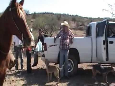 Los Vaqueros De Cumpas, Sonora. Rancho