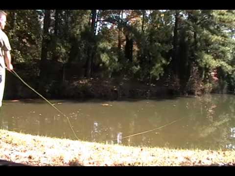 Fishing report - Fly Fishing for Bluegill Video