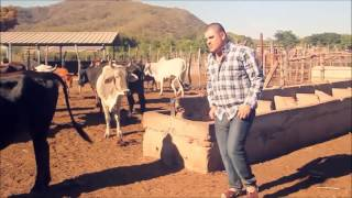 VIDEO MIX El Komander Ft Larry Hernandez- Regulo Caro - Banda Los Recoditos  ETC.
