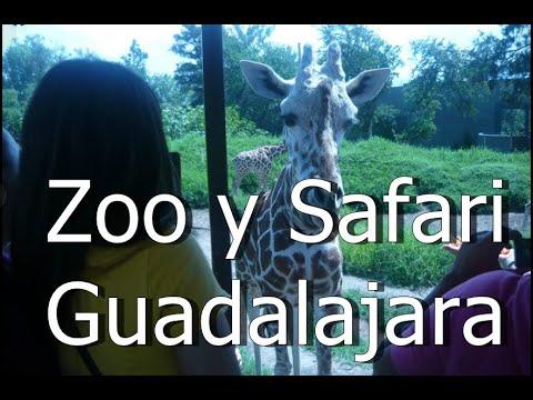Zoológico Safari & Acuario Guadalajara