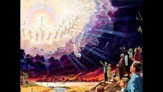 Câu chuyện những phép lạ từ Thiên Đàng (phần 1)