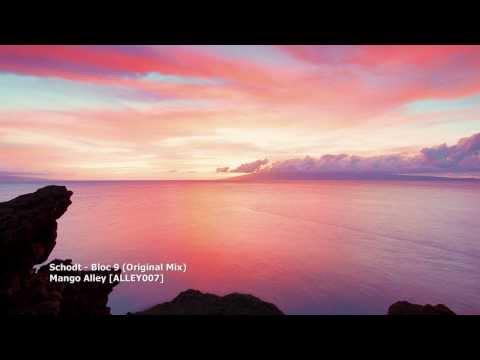 Schodt - Bloc 9 (Original Mix)[ALLEY007][TBT007]