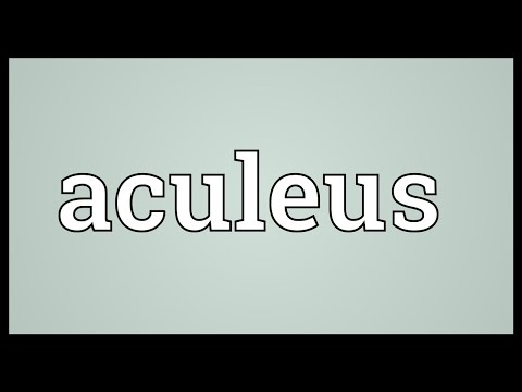 Header of aculeus