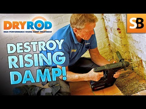 Easy DIY Solution to Treat Rising Damp in Walls