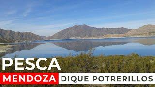 DIQUE POTRERILLOS MENDOZA | PESCA CON MOSCA 🎣 FLY FISHING