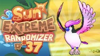 I CAN'T BELIEVE I ACTUALLY FOUND ONE.. - Pokemon Sun Extreme Randomizer (Episode 37)