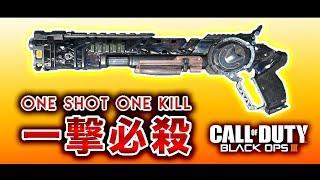 【BO3実況】一撃必殺武器でS&Dにてキルしまくり大暴れ!www【ハセシン】part310