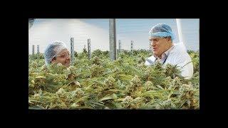 SPRWF $1.2070 April 10, 2018 Supreme Pharmaceuticals 7 Acres Cannabis Facility in Kincardine, Ontari