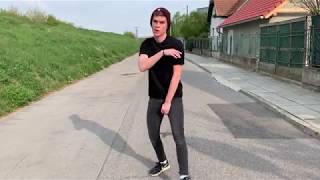 Twenty One Pilots - Lane Boy Music Video (cover)