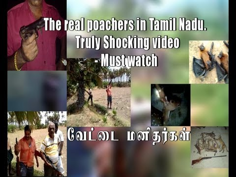The Real Poachers In Tamil Nadu. Truly Shocking Video - Must Watch [red Pix] video