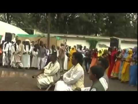 Eritrea Tigre Music  By Mohammed Ibrahim  ولت عمران   اب  محمود ابراهيم video
