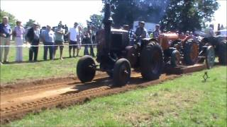 tractor pulling lanz bulldog et le robuste hotbulb