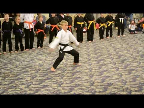Meta Martial Arts - Demo Team - Oct 12, 2013 video
