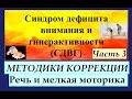 СДВГ у детей Часть 3 1 Развитие речи и мелкой моторики 2 6 лет mp3