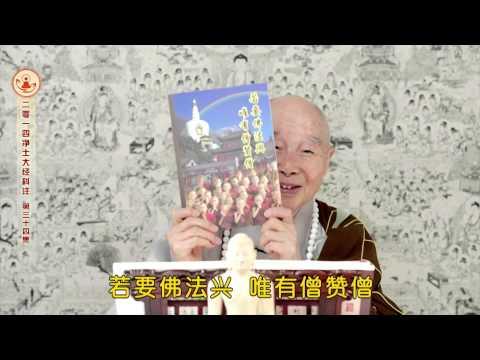 Tịnh Độ Đại Kinh Khoa Chú (Tập 34, 2015)