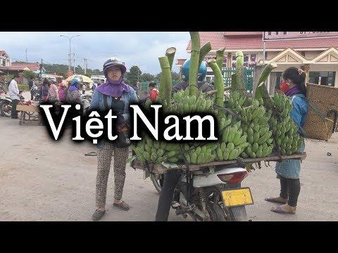 ዦ 80 ዣ Прибытие во Вьетнам. Суровые вьетнамские реалии