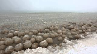 Ice Balls forming along Lake Michigan near Glen Arbor