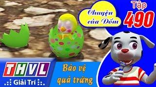 THVL | Chuyện Của Đốm - Tập 490: Bảo Vệ Quả Trứng