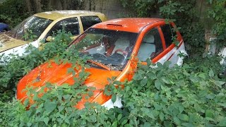 Abandoned Car Graveyard - Ureel Cars -