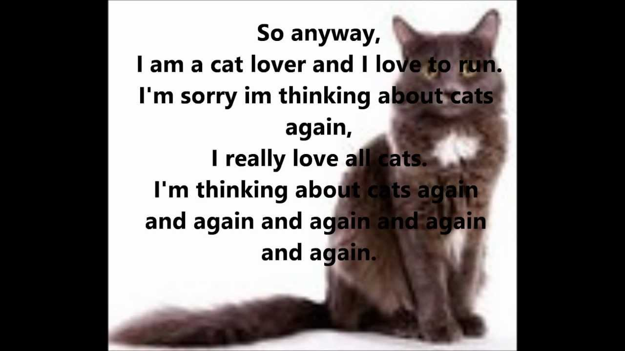 the cat song i love cats dating