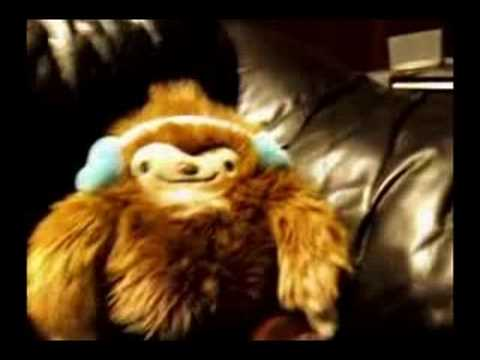 Quatchi Dancing to &quot;Forest Ninja by Very Tasteful&quot;