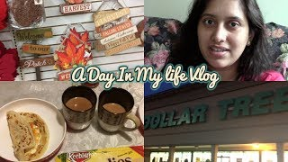 Indian/Bengali Breakfast Routine | Day In My Life Vlog (SAHW) | Tropical Storm Irma | Dollar Tree