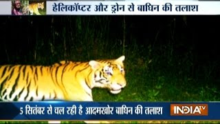 Forest Department's 400-member Team Fails to Catch Man-eater Tigress