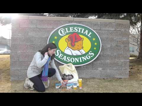 Celestial Seasonings with Alicia Rossman