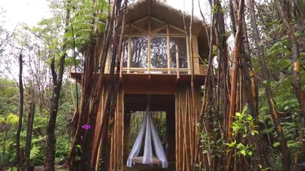 Dreamy Tropical Treehouse On The Big Island Hawaii YouTube