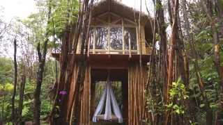 Dreamy Tropical Treehouse on The Big Island Hawaii