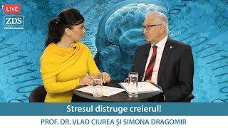 Stresul distruge creierul!