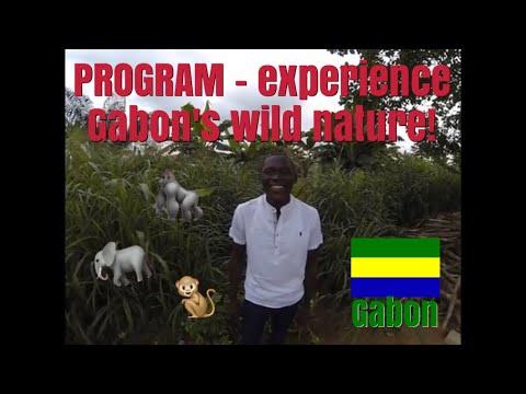 PROGRAM - experience Gabon's wild nature