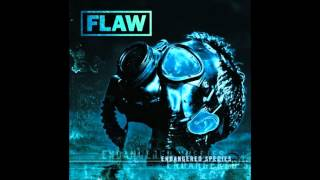 Watch Flaw Not Enough video