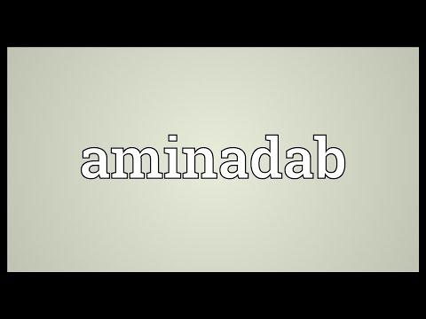 Header of aminadab