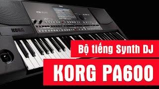 download lagu Korg Pa600  - Bộ Tiếng Synth Dj gratis