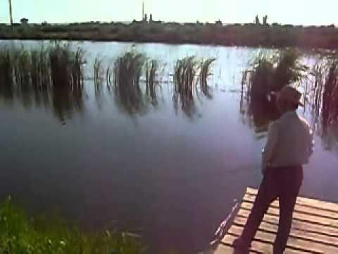 берфорум рыбалка видео